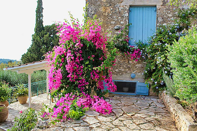 Portokali Cottage Mature Garden