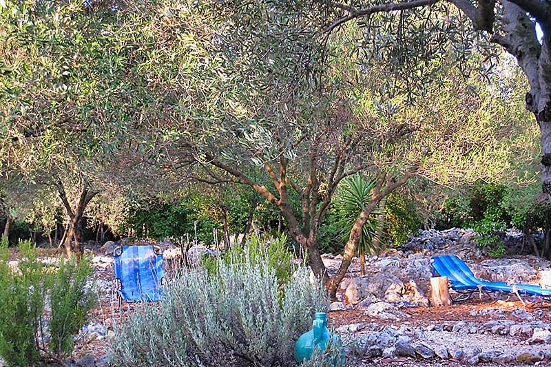 Sunloungers in Garden